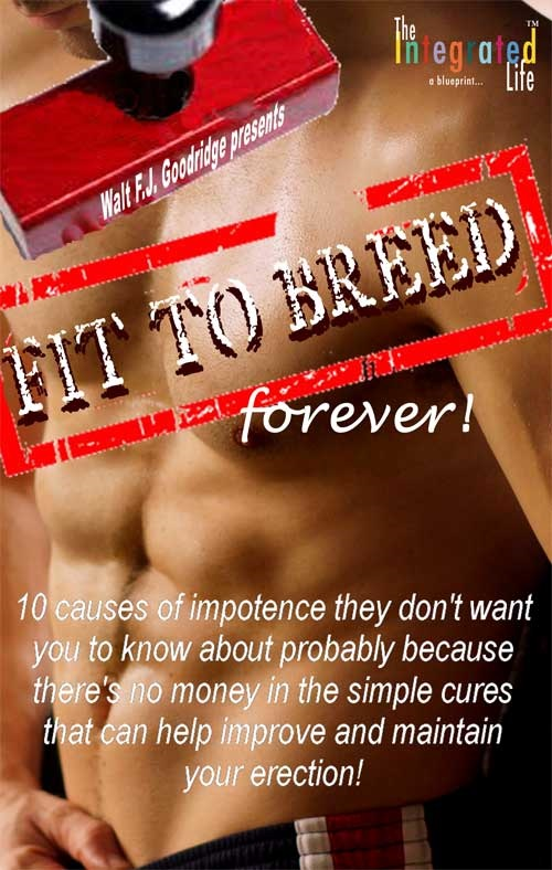 Fit to Breed...Forever book cover